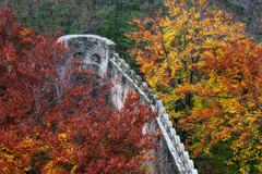Medieval Castle Wall Battlement in Autumn Forest - stock photo