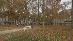 Beautiful alley in the park near Congress Square in Ljubljana Stock Footage