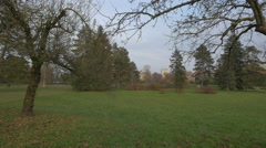 Tree trunks and green grass in Tivoli Park, Ljubljana Stock Footage