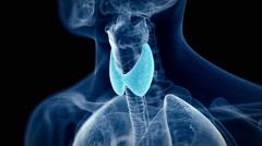 The human thyroid Stock Footage