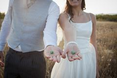 Newlywed couple holding green dice Stock Photos