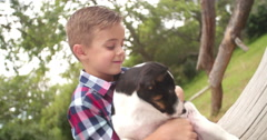 Male Child stroking his pet friend, a crossbreed puppy dog - stock footage