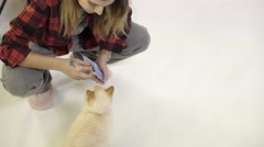 A girl feeds a cat with complementary pet food Stock Footage