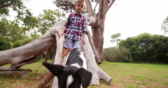 Boy and puppy dog walking on tree branch in park - stock footage