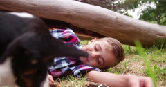 Little child playing with puppy in grass field Stock Footage