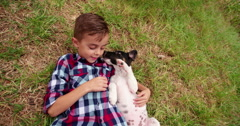 Puppy licking little boy's face who is lying in grass - stock footage