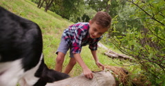 Boy with missing teeth smiling whole playing with his puppy dog Stock Footage