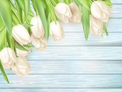 Fresh white tulips on wood planks. EPS 10 - stock illustration