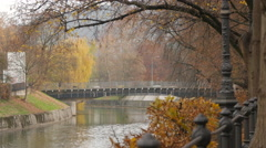 Rusty leaves moving in the wind by the riverside in Ljubljana Stock Footage