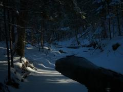 Light On A Winter Stream In A Deep Ravine Stock Photos