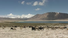 Pamir plateau, Tajikistan.mp4 Stock Footage