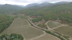 Grape fields from the high in Crimea Stock Footage