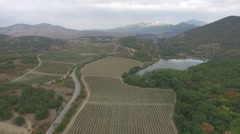Over grape fields and lake near mountains in Crimea Stock Footage