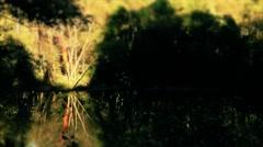 Shadows over lake Timelapse Swing Tilt Stock Footage