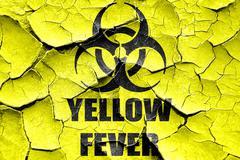 Grunge cracked yellow fever concept background - stock illustration