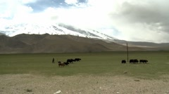Xinjiang, mountains, herders, China (1ex).mp4 Stock Footage