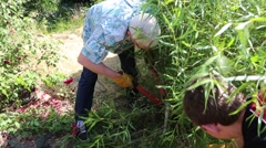 grandpa shows grandson how to use a hedge trimmer - stock footage
