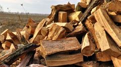 Pile of Wood on the Ground - stock footage