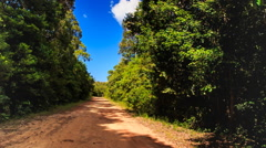 Camera Moves up and down Park Ground Road Plants in Tropics Stock Footage