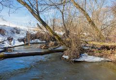 Forest river at early spring Stock Photos