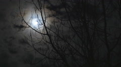 Time lapse of the moon glowing behind the clouds and tree - stock footage