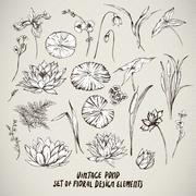 Set of vintage pond water flowers vector elements Stock Illustration
