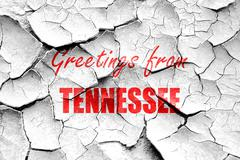 Grunge cracked Greetings from tennessee Stock Illustration