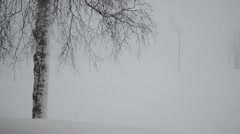 heavy snowstorm over birch tree and farm road - stock footage