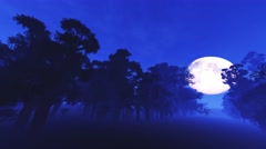 4K Spooky Magic Forest and Fullmoon Wide Angle Pan 1 Stock Footage