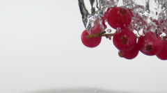 Red Currant Falling in Water, Slow Motion. - stock footage