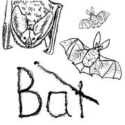Bats. Vector black silhouettes. Piirros
