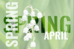 April postcard with spring background Stock Photos