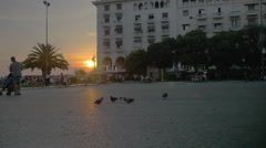 Pigeons flying away in the city at sunset Stock Footage