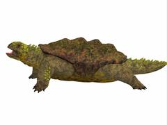 Proganochelys Side Profile - stock illustration
