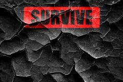 Grunge cracked Survive or die - stock illustration