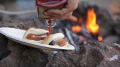 Campfire hot dogs Stock Footage