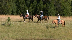 Three cowboys ride horses, slow motion Stock Footage