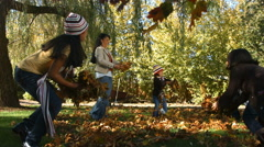 Family playing in the leaves Stock Footage
