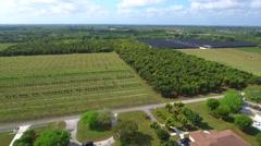 Drone aerial Homestead FL farmland - stock footage