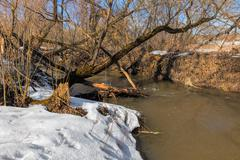 Forest river at early spring - stock photo