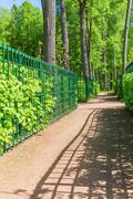 Pathway with fence in green park Stock Photos