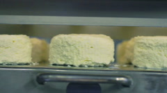 Closeup of cottage cheese on production line. Food production line - stock footage