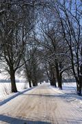 winter road ,  roadside. - stock photo