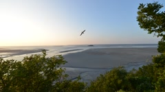 Time Lapse of Mont Saint Michel Tide Stock Footage