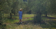 Woman with pad walking in the garden or woods Stock Footage