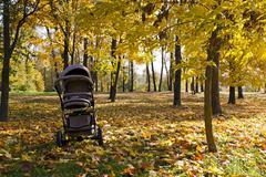 pushchair ,  autumn season. - stock photo