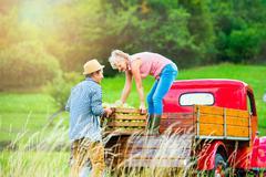 Senior couple harvesting apples, loading them into vintage car - stock photo