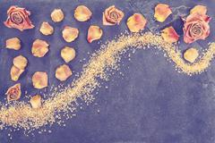 Vintage stylized dried roses and petals. Stock Photos