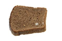 bread mold. close-up - stock photo