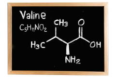 Blackboard with the chemical formula of Valine Stock Illustration